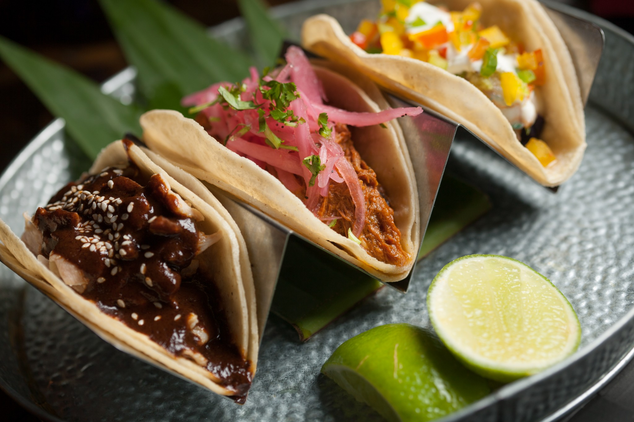 Taco Bar y Mezcaleria
